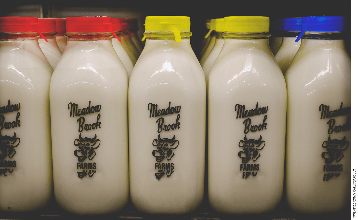 Dairy bottles on a shelf