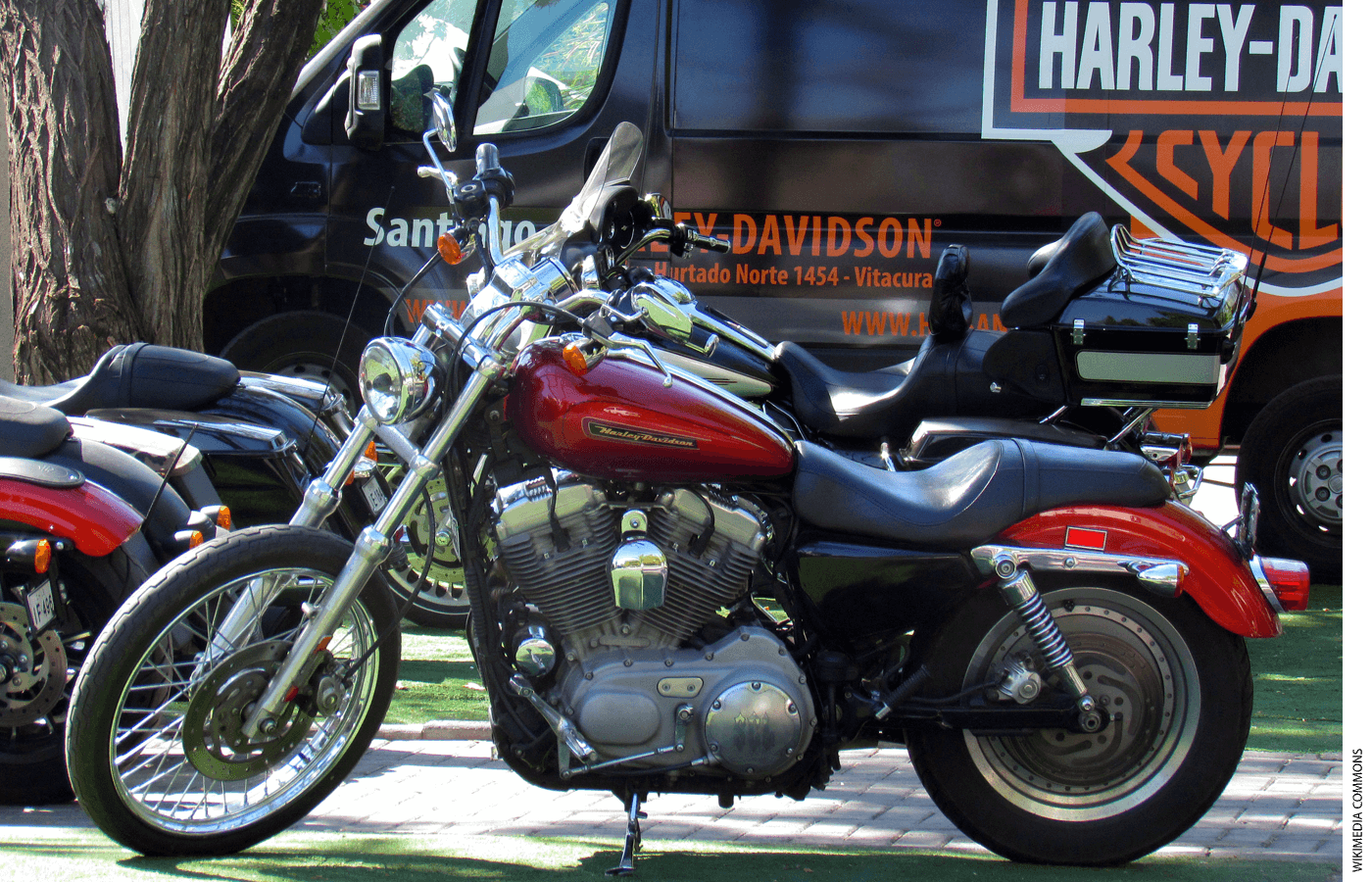 Photo of a Harley Davidson motorcycle