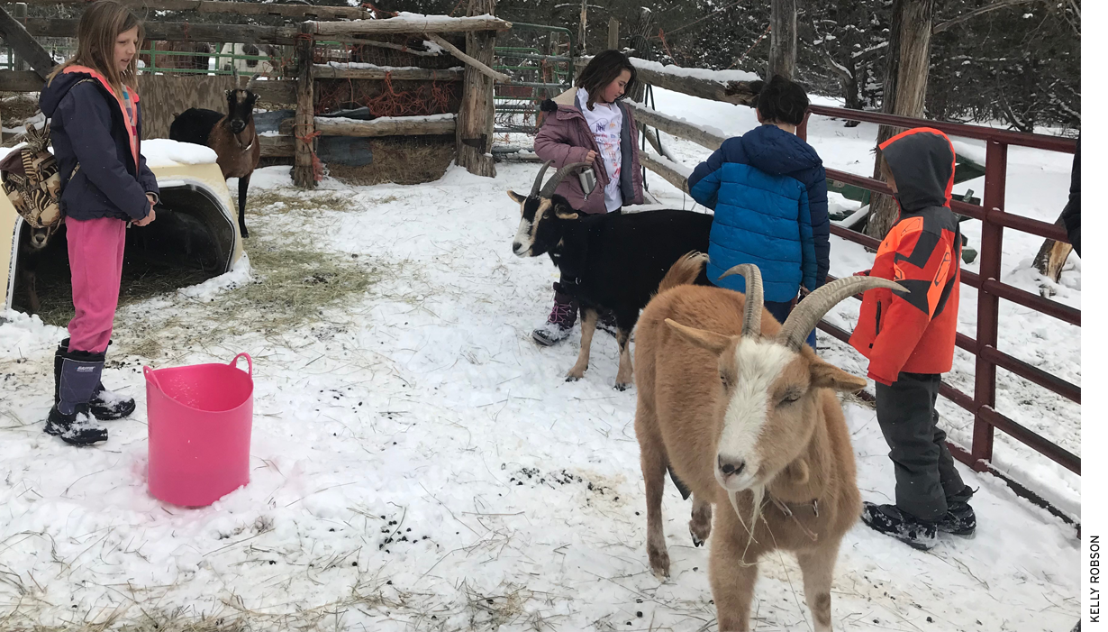 Students at the Roots and Wings Community School in Questa, New Mexico, enjoy outdoor time with goats at their rural charter school.